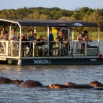 hippo & croc boat trips st lucia south africa