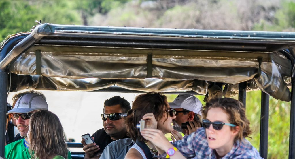imfolozi park half day safari