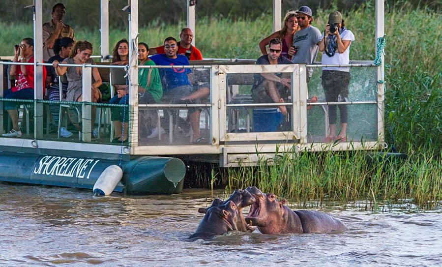 hippo boat cruise isimangaliso wetland park