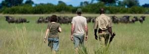 st lucia safari tour packages