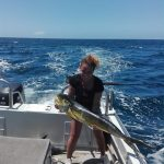 dorado caught on charter