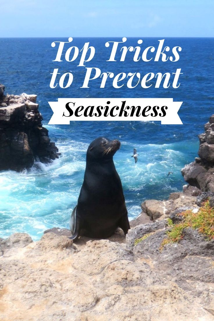 how to prevent sea sickness
