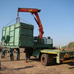 container for rhino relocation