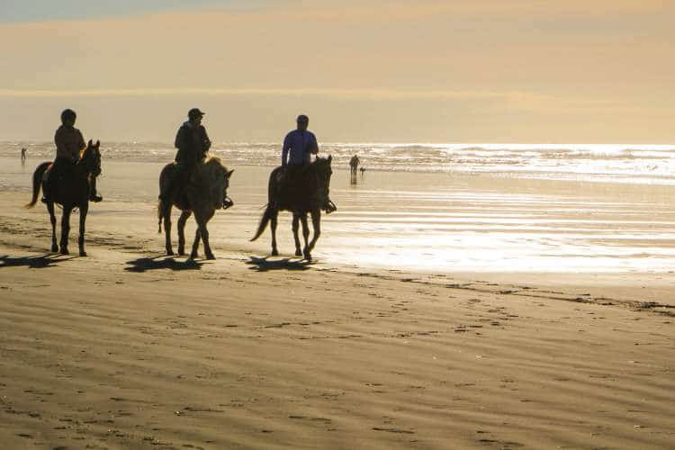 beach riding st lucia south africa rides