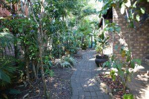 bhangazi lodge st lucia garden area