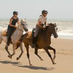 st Lucia horse riding
