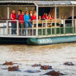 hippo boat trips clients