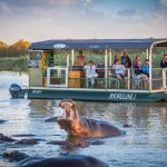 1 night safari package st lucia south africa