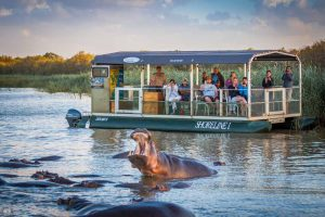 4 night safari package st lucia south africa