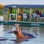 st lucia estuary boat trips
