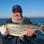 massive tiger fish caught