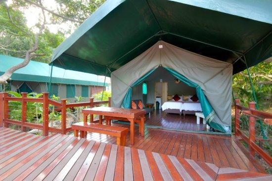 urban glamping luxury tents