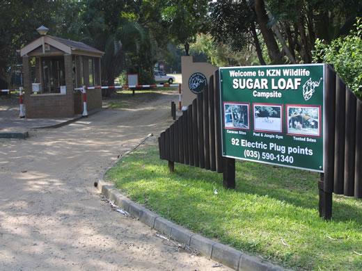 sugarloaf campsite st lucia