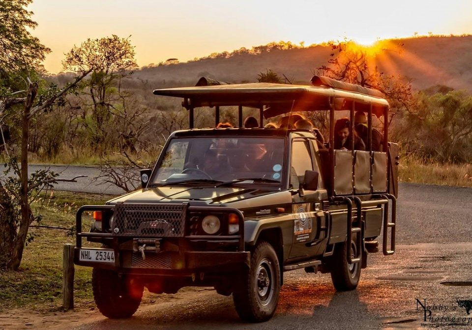 full day hluhluwe umfolozi game reserve safari